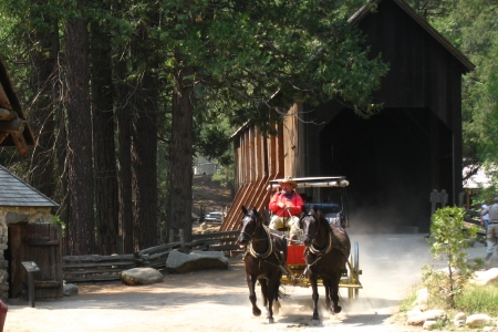 Enjoy a stagecoach ride in Wawona's Pioneer Yosemite History Center