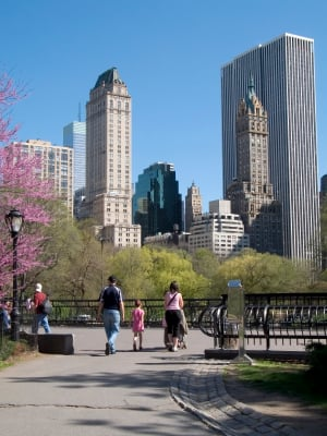 New York City's Central Park (Photo purchased from istockphoto.com)