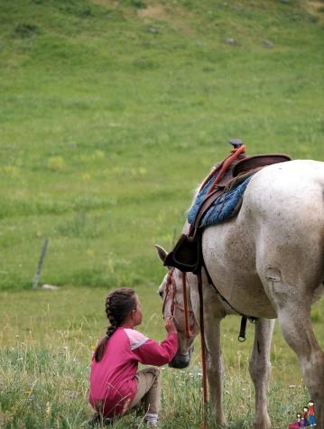 Horseback riding in Yellowstone Park