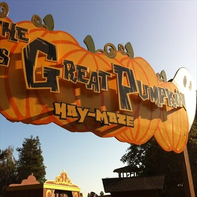 Knott's Berry Farm Camp Snoopy Halloween scavenger hunt