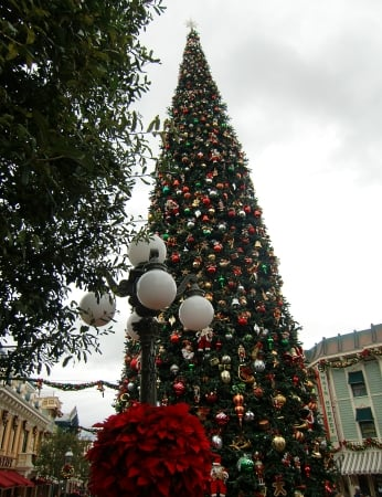 Christmastime at Disneyland