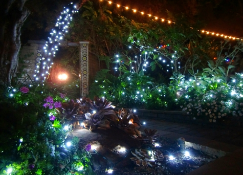 Garden Of Lights At San Diego Botanic Garden