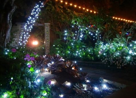Garden of Lights at San Diego Botanic Garden