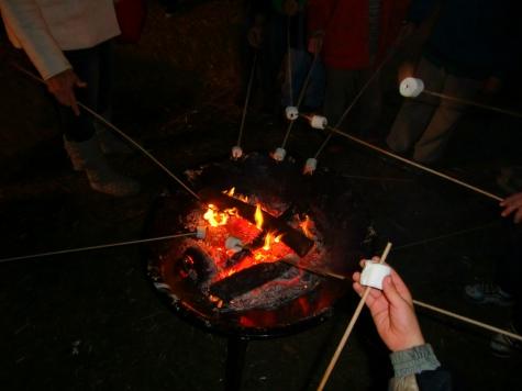 Roasting marshmallows at San Diego Botanic Garden