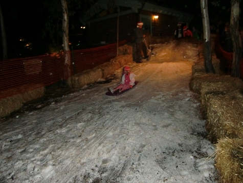 Snow sledding at San Diego Botanic Garden of Lights