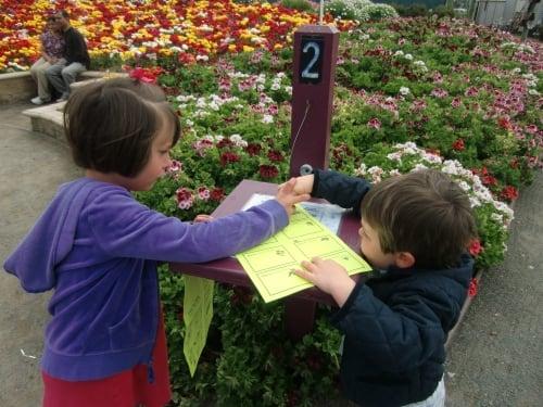 Carlsbad Flower Fields scavenger hunt passport