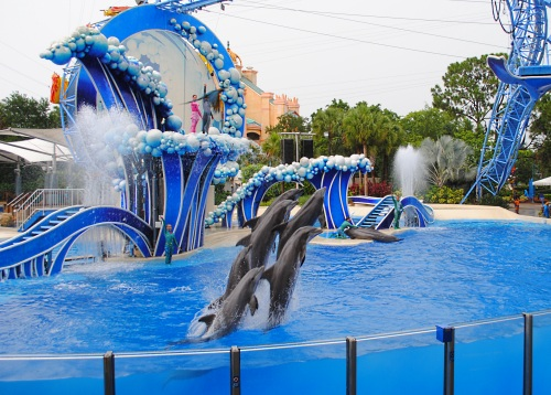Image result for blue horizons seaworld orlando