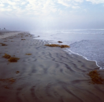 Silver Strand State Beach offers natural outdoor play opportunities for families (Photo by Amber Johnson) - Loews Coronado