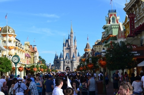 Magic Kingdom crowd