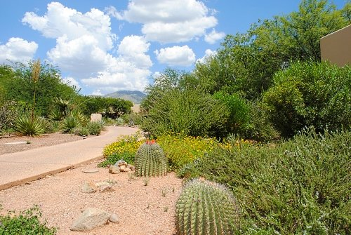 Miraval desert in Tucson, Arizona