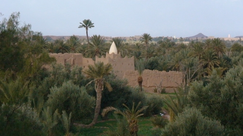 palm oasis in skoura, morocco