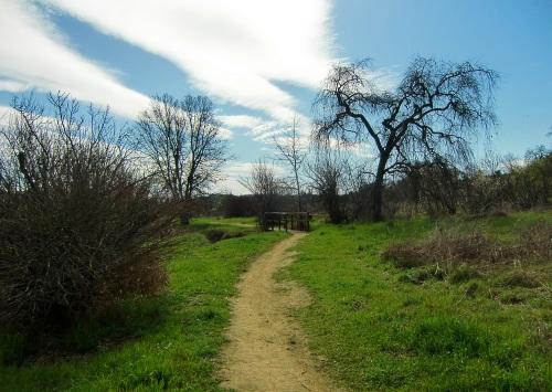Hiking trail in Napa