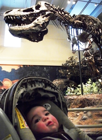 Carnegie Museum of Natural History - Pittsburgh with Kids: An Education in Fun