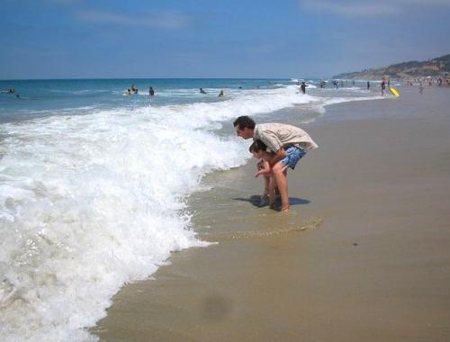 Torrey Pines State Beach, La Jolla, California