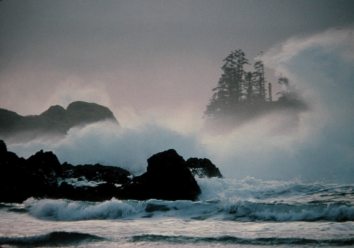 Tofino winter ocean waves
