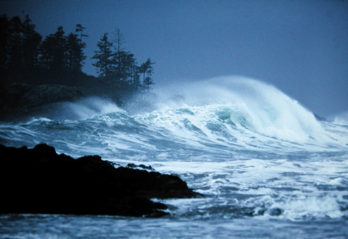 Storm watching in Tofino