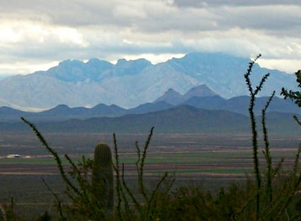 Exploring Nature with Kids in Tucson, Arizona - View from Saguaro National Park