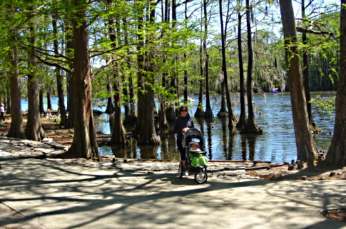 Greenfield Park in Wilmington, North Carolina for families