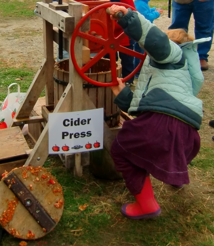 Cider press at Wolfe's Neck Farm in Freeport, Maine