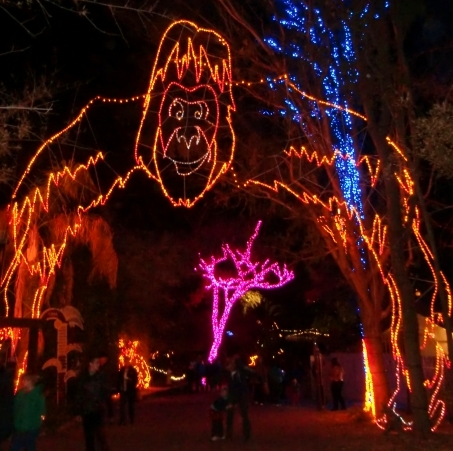 Holidays In Phoenix At Zoolights - Phoenix Zoo Christmas Lights