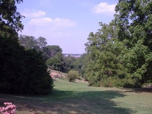 Nichols Arboretum near Downtown Ann Arbor