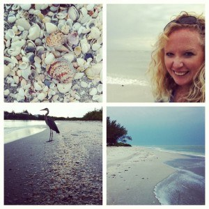 The beauty of Sanibel and Captiva Islands