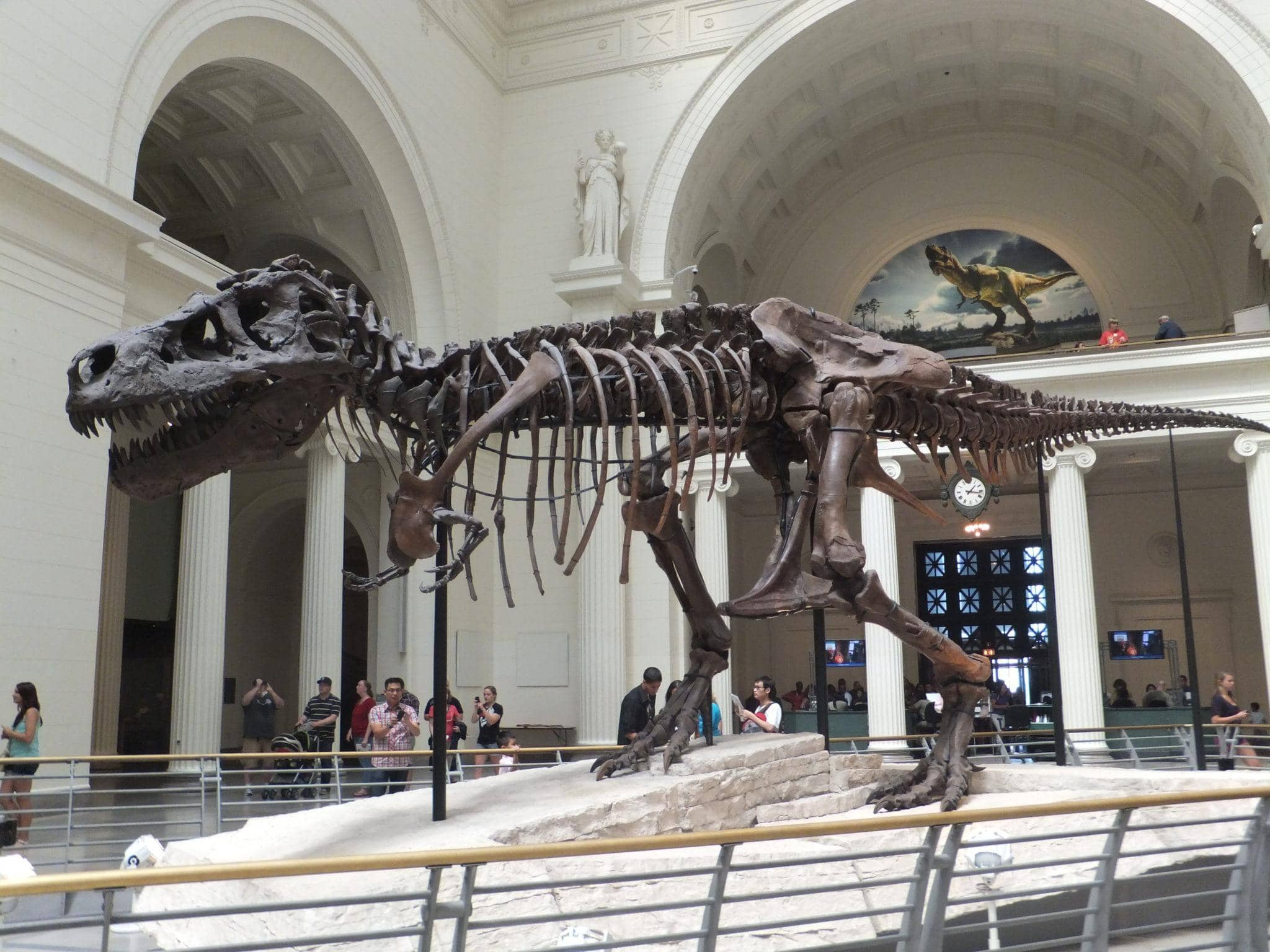 Sue the Tyrannosaurus Rex at Field Museum in Chicago