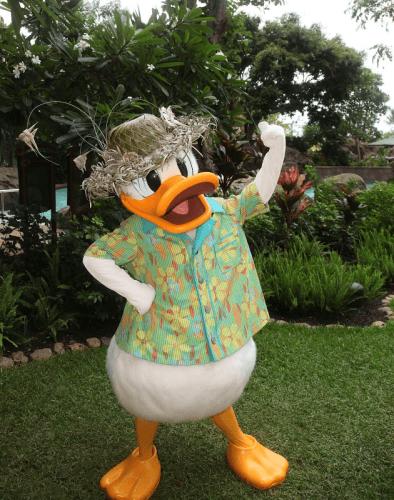 Donald Duck getting his hula on at Disney's Aulani Resort