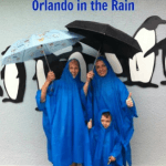 Tips for Visiting SeaWorld Orlando in the Rain