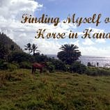 Finding Myself on a Horse in Hana