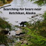 Searching for Bears Near Ketchikan, Alaska with Celebrity Cruise Line
