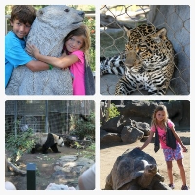 The San Diego Zoo welcomes families during Kids Free San Diego