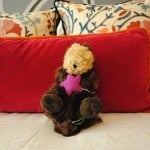 A plush otter greets child guests with the You Otter Book This Package at Hotel Monaco Seattle