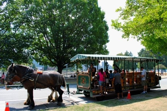 Stanley Park Horse-Drawn Tour