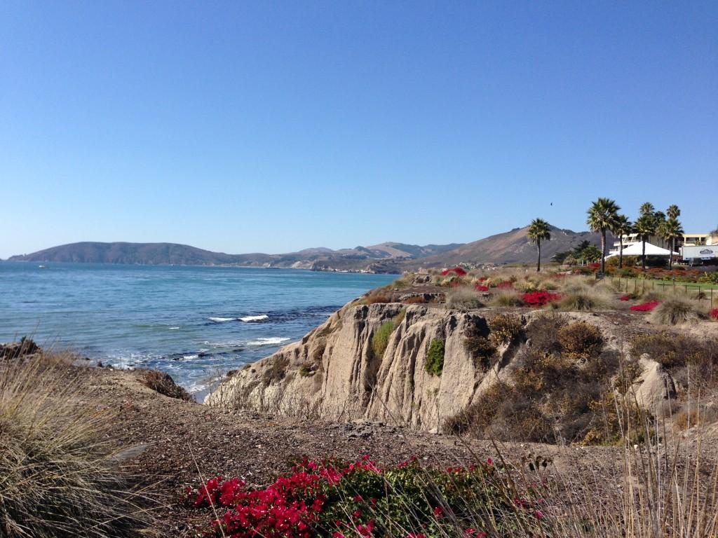 The stunning California coastline, Pismo Beach