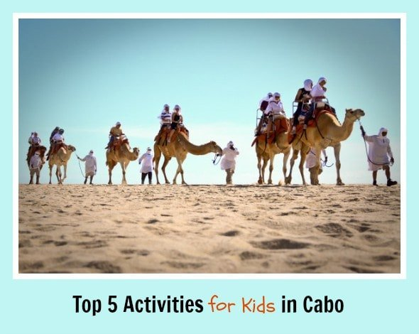 Outback and camel safari in Los Cabo (Photo credit: Cabo Adventures)
