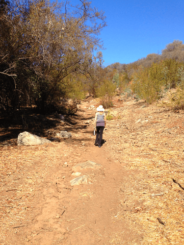 Hike at Los Padres National Forest