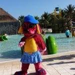 Raggs the Dog at the Grand Palladium Riviera Maya Resort