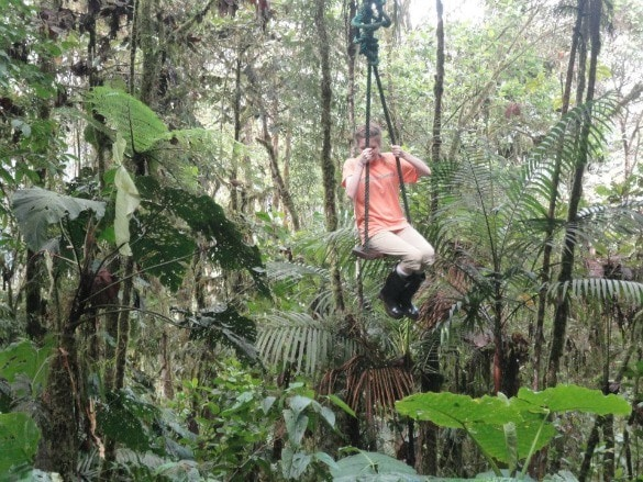 Ecuador rainforest swing