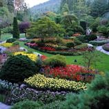 Butchart Gardens in Victoria, British Columbia