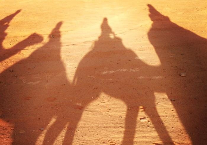 Jordan camel ride
