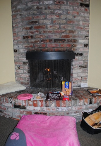 Hofsas House fireplace with pet supplies and s'mores fixings