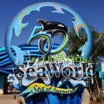 SeaWorld San Diego 50th Anniversary and New Explorer's Reef