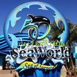 Celebrate SeaWorld San Diego's 50th Anniversary