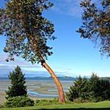 Vancouver Island Treasures - Parksville Qualicum Beach