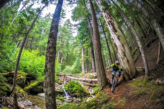 Things to Do with Kids in Whistler in Summer (Photo credit: Tourism Whistler)