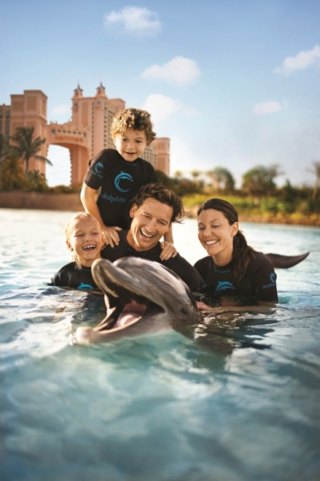 You will never forget swimming with dolphins at Atlantis!