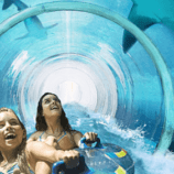 Slide through a tunnel in a shark tank at Atlantis Resort!