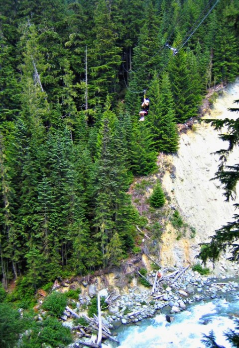 Whee! Zip-lining across Fitzsimmons Creek (Photo credit: Claudia Laroye)