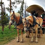 Keystone Wagon Ride Dinner – Way More Than a Meal
